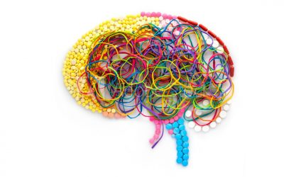 Where I am coming from:  #4 Neuroscience and developmental psychology